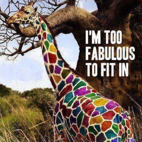fabulous giraffe